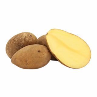 Kartoffeln, Cilena (festkochend)