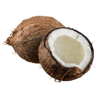 Kokosnuss - Neue Ernte