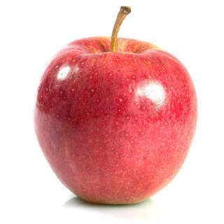 Apfel Gala Must