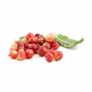 Stachelbeere, rot, 500g
