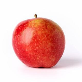 BIO Apfel Wellant