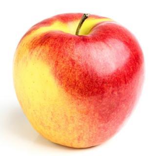 BIO Apfel Elstar