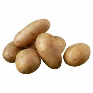 BIO Kartoffel Annabelle (festkochend)