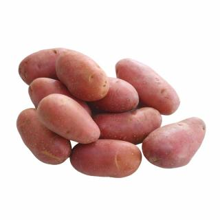 BIO Kartoffel, Laura (leicht mehlig)