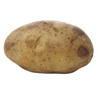 BIO Ofenkartoffel