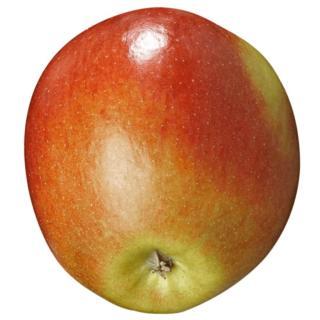 BIO Apfel Braeburn