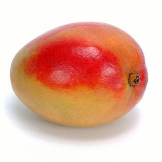 """BIO Mango """"Kent"""""""