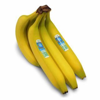BE CLIMATE Bio-Banane