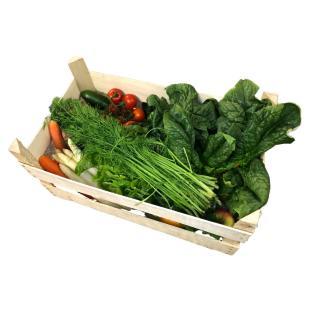 Gemüse-Box Family
