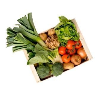 Regionales Gemüse/Obst XS